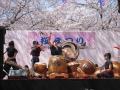 桜まつり(和太鼓御響)