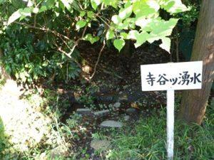寺谷ツ湧水