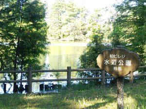 kashiwa-bireji
