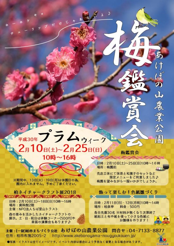 あけぼの山農業公園 梅鑑賞会