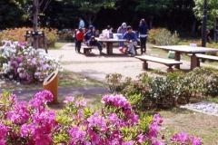 増尾城址公園
